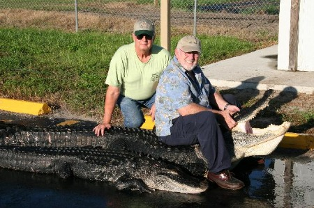 Dales two alligators from Florida hunt